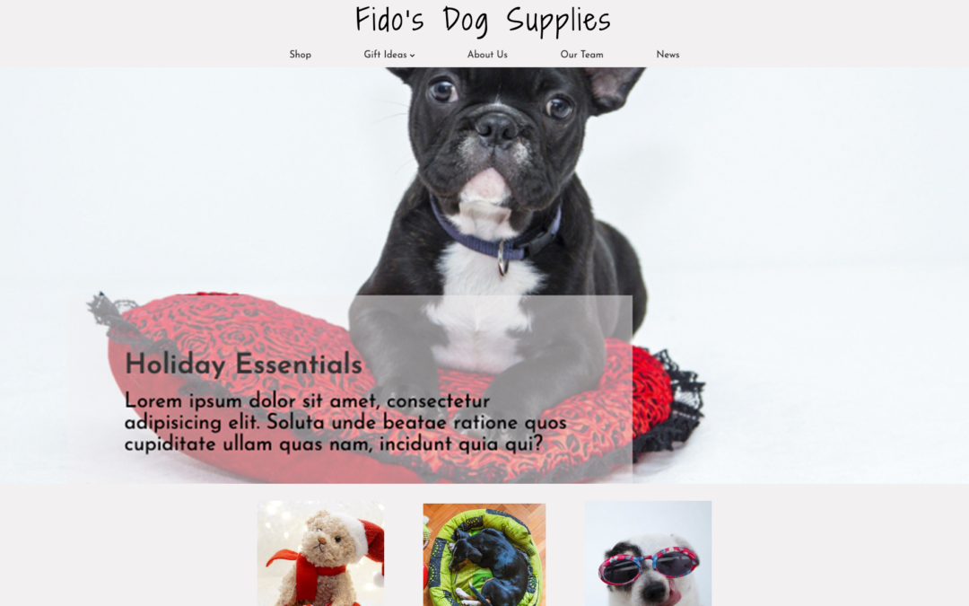 Fido's Dog Supplies | Pet Store Mockup